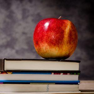 Seattle Public Schools serves the entire city of Seattle.